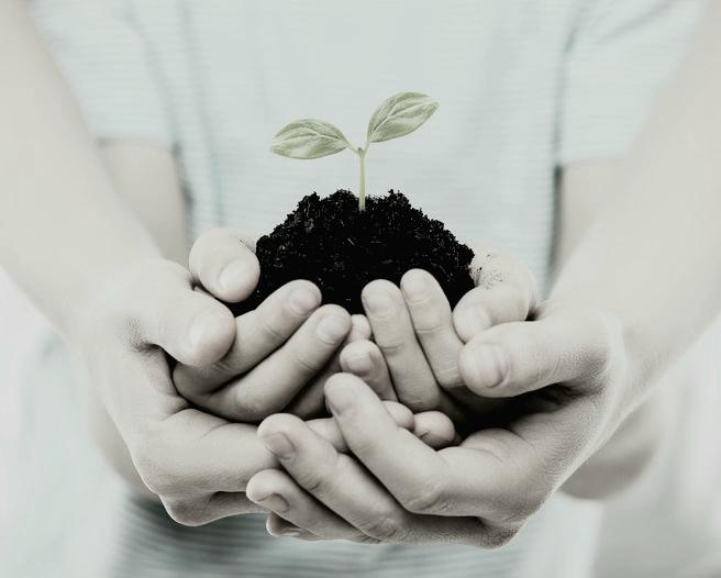 Día del Técnico y el Licenciado en Salud Ambiental